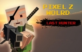 Pixel Z world: Last hunter