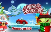 Winter wonderland: Snow racing