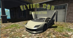 Flying car: Extreme pilot