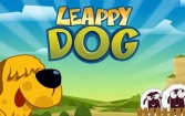 Leappy dog