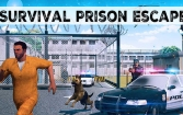 Survival: Prison escape v2. Night before dawn