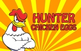 Hunter chicken eggs