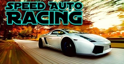 Speed auto racing